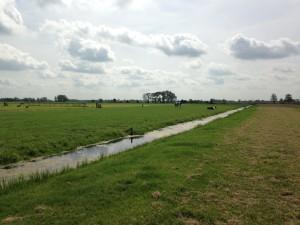 Landschap bij Oudewater (foto: Rowin van Lanen)
